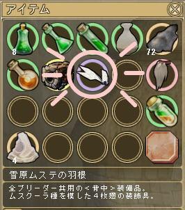 ムステの羽根-2.jpg